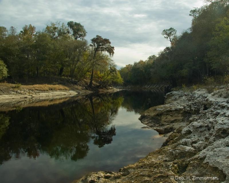 Still Suwanee River - ID: 11798101 © Deborah H. Zimmerman