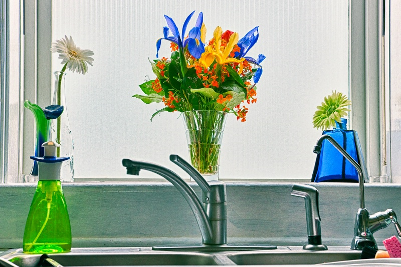 Flowers in the Kitchen Window - ID: 11832755 © Carolina K. Smith