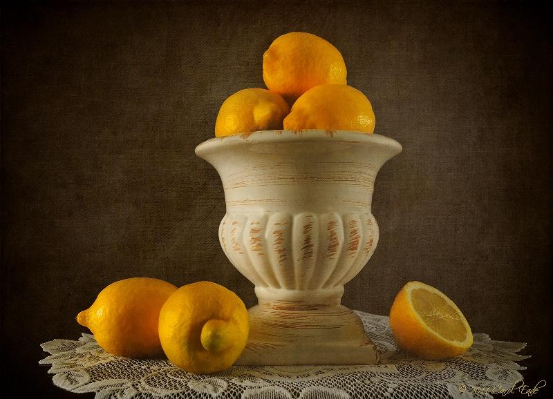 Lemon Still Life - ID: 11891591 © Carol Eade