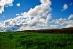 Grass, earth & sk...