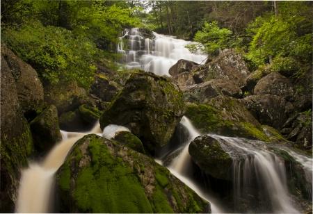 Elakala Falls in the Canyon