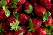 Strawberry dream...