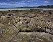 Tatami Rocks
