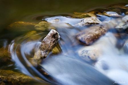 Braving the Rapids