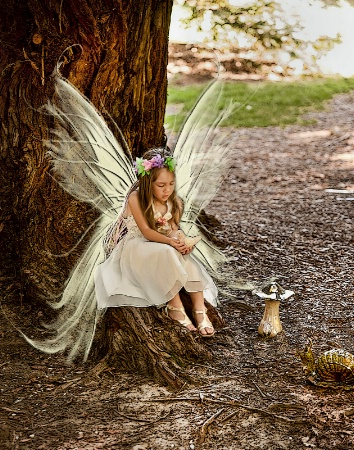 Little fairy in the forest