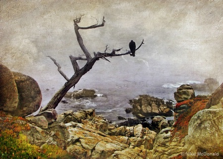 Monterey Mist, painted