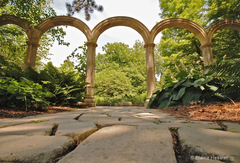 Hyperfocal Distance-Cleveland Botanical Gardens
