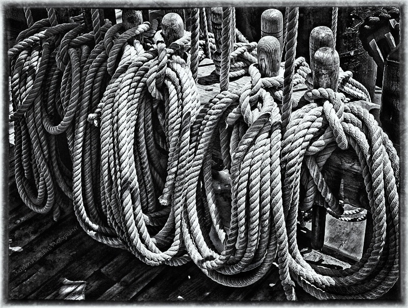 Ships Ahoy! - ID: 11977000 © JudyAnn Rector