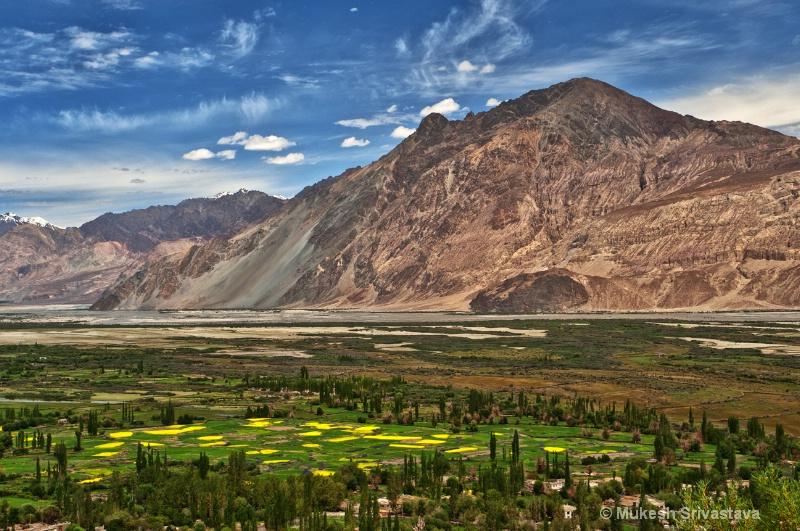 Ladakh-1/2011