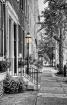A Quiet Street in...