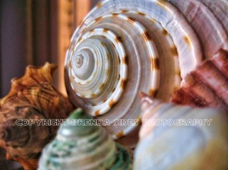 ~Swirl~