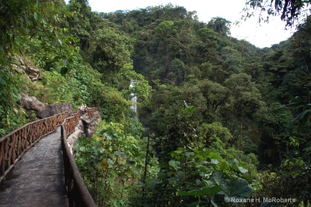 La Paz Waterfalls, Costa Rica1