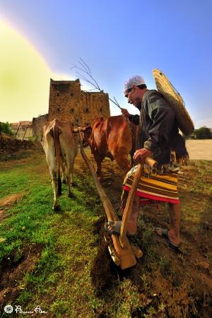 Farming Time ..