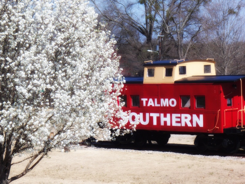 Talmo Southern