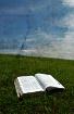 Sunshine and Bibl...
