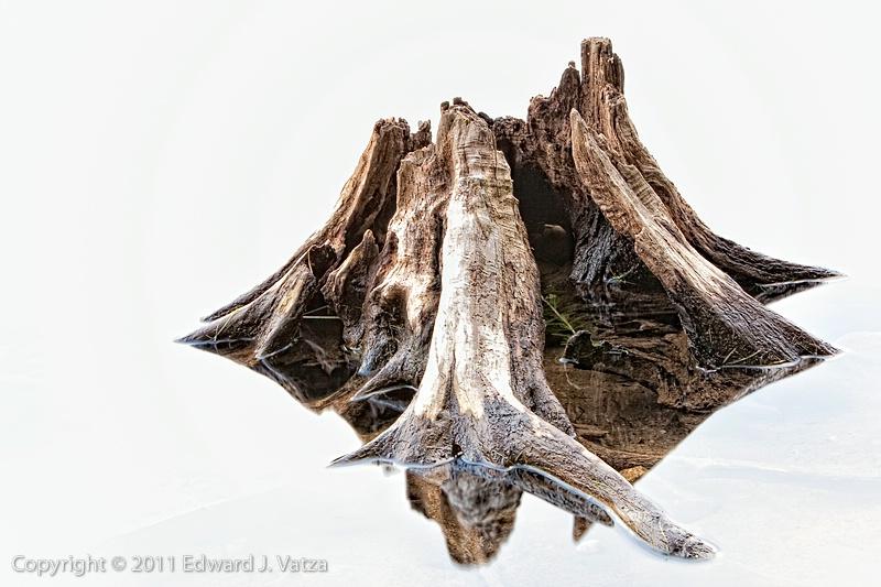 High-key Stump
