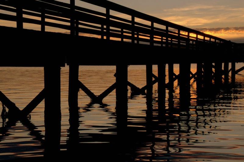 sunset pier - ID: 12131535 © cari martin