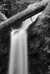Marymere Falls B&...