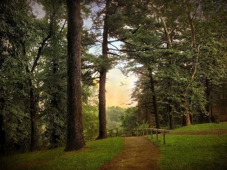 Path at Dusk