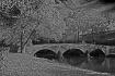 Burnside Bridge A...