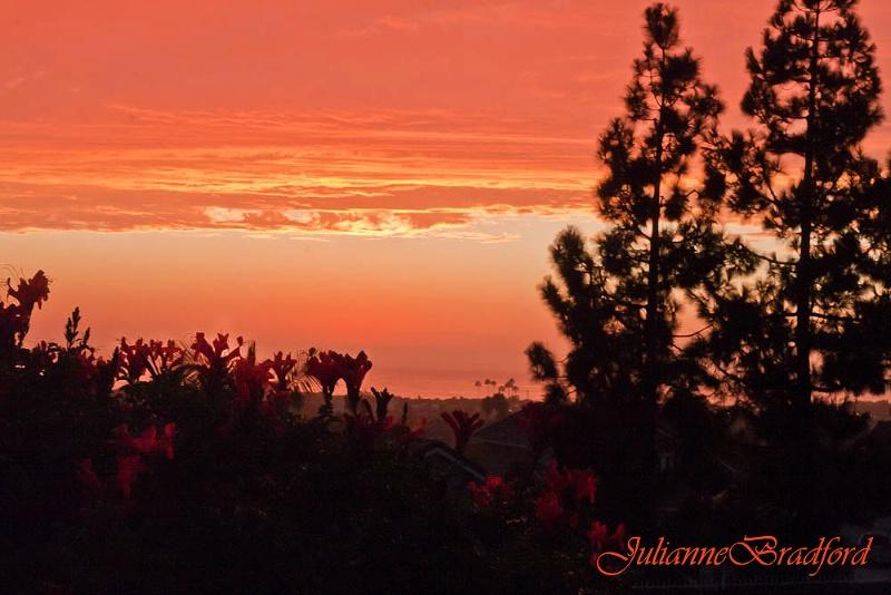 Sherbert Sunset