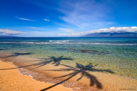 On the Beaches of Maui HI
