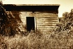 Old Hen House