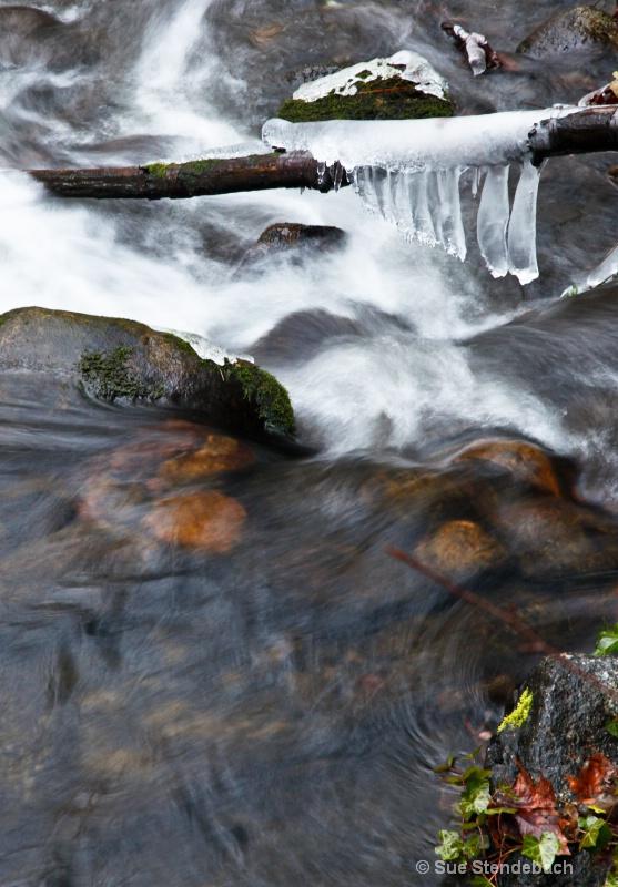 Beauty of Ice, Ashland Creek, Ashland, OR - ID: 12214985 © Sue P. Stendebach