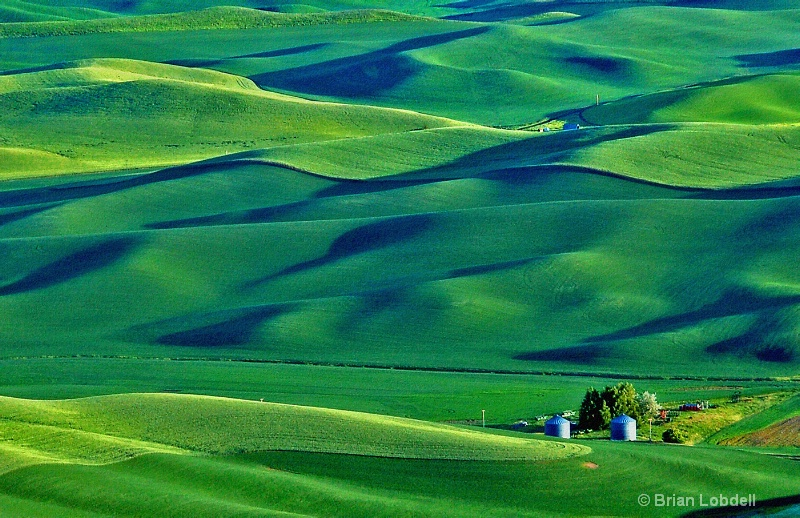 Emerald Hills of the Palouse