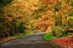 autumn landscape ...