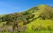 California Hills ...
