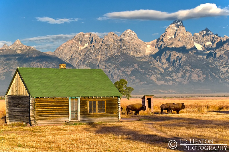 Mormon Row Cabin