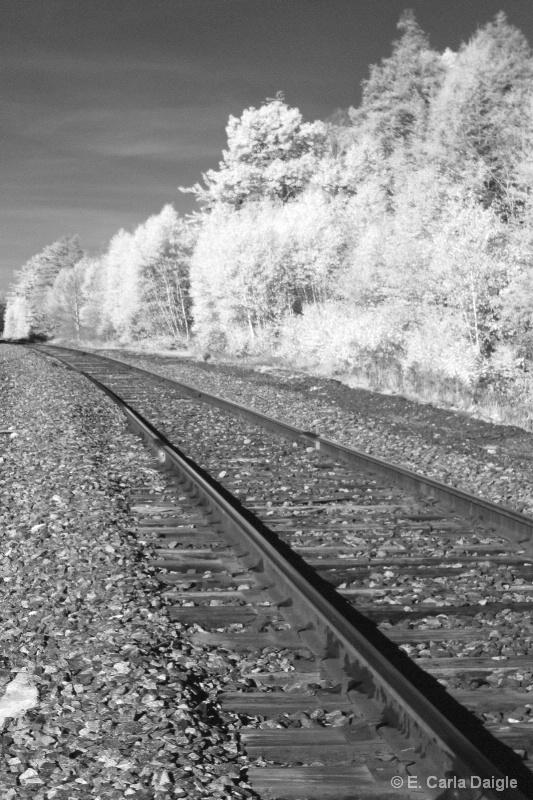 Railroad Tracks2 - ID: 12330966 © Carla Daigle