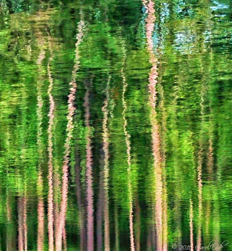 Watercolor Forest - ID: 12345943 © Carol Eade