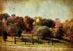 ~ Autumn Splendor...
