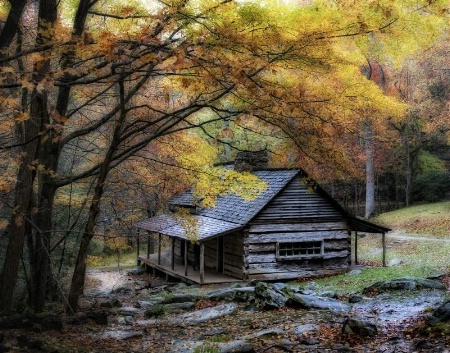 A Damp Autumn Day