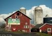 NY Farmers love t...