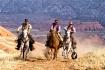 Racing Cowboys