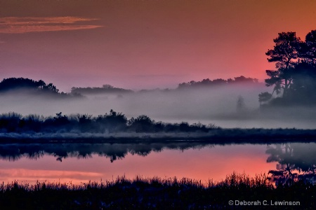 Chincoteague Dawn