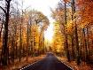~The Long Road Ho...