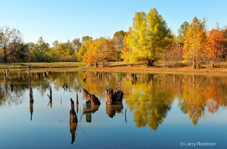 Autumn Reflections at Pinnacle Mountain State Park