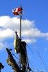 Mast of the Pinta...