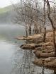 beaver lake shore...