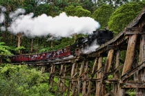 Puffing Billy Train (revised)