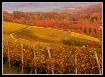 Autumn in Liel