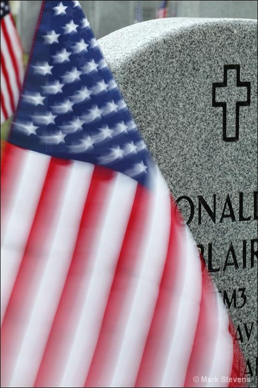 Veterans Day 2011  #2
