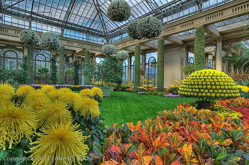 Inside the Conservatory #1