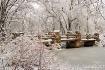 'Winter White...