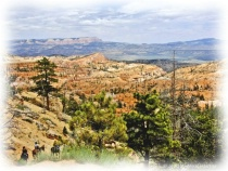 brice canyon with horses