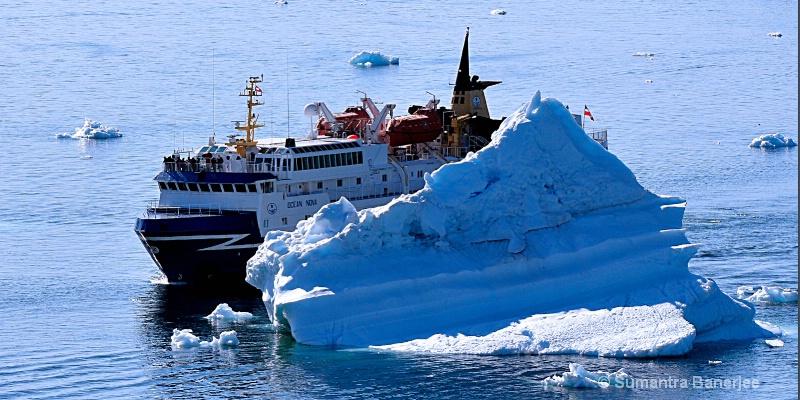 sailing past icebergs  greenland